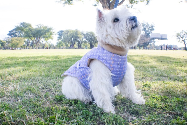 Abrigo de invierno para perros Miami Barki™