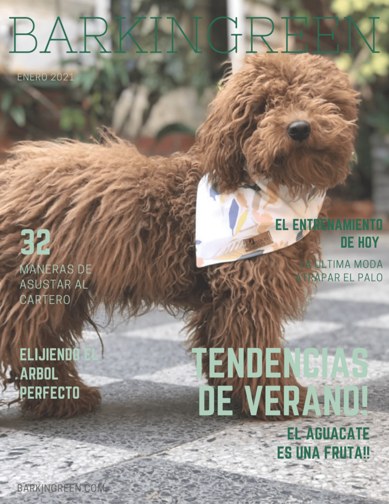 BARKINGREEN MAGAZINE