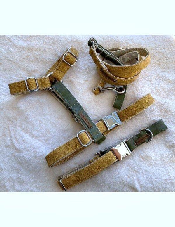 collar leash harness olive maize vegan leather dog